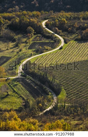 Road in the Motovun valley