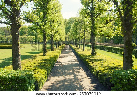 road in the park on a sunny day - stock photo