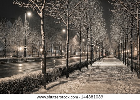 Road in the winter night - stock photo