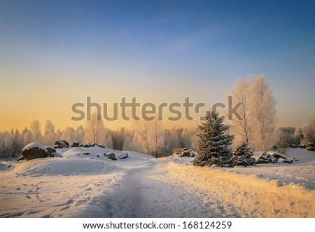 road in winter park, bright sunny day - stock photo