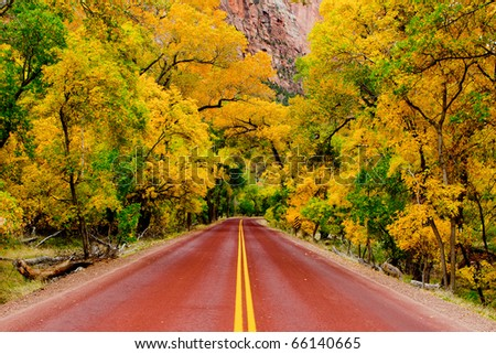 Road in Zion - stock photo