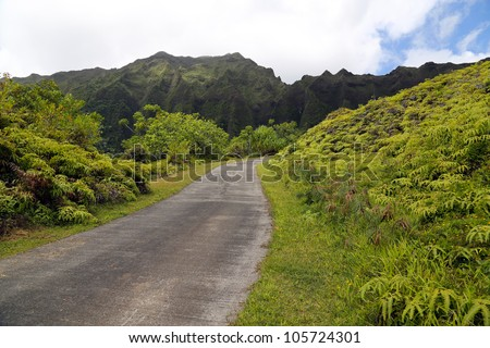 Road leading into a tropical area with mountains in background - stock photo
