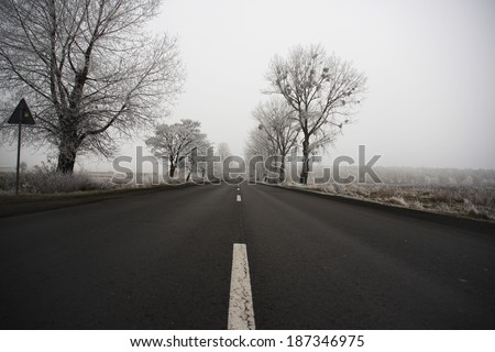 Road on a cold foggy winter's day