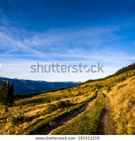 Road on green meadow in mountains in a lovely sunny day - stock photo