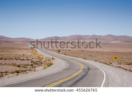 Road running across Los Cardones National park at high altitude, Salta, Argentina