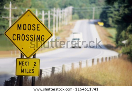 "Road sign ""MOOSE CROSSING"" in road through huge forest area"