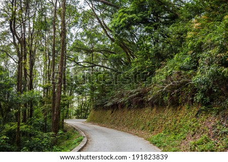 Road through a country park - stock photo