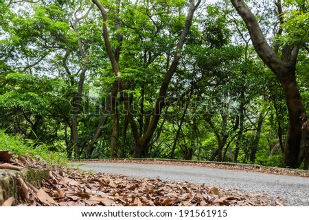 Road through a country park in Hong Kong - stock photo