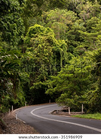 Road through dense rainforest near Cairns, Queensland, Australia  - stock photo