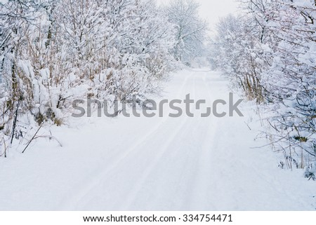 Road through frozen forest with snow - stock photo