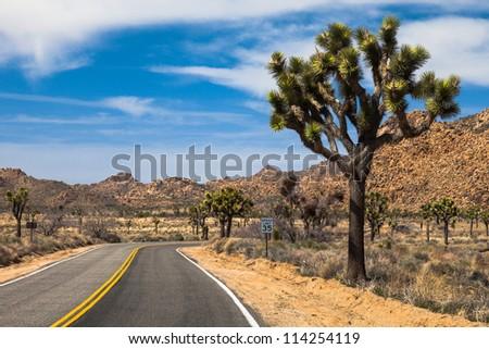 Road through Joshua Tree National Park, California. - stock photo