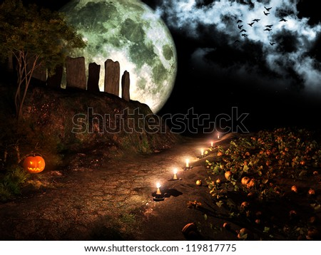 Road through pumpkins field - stock photo