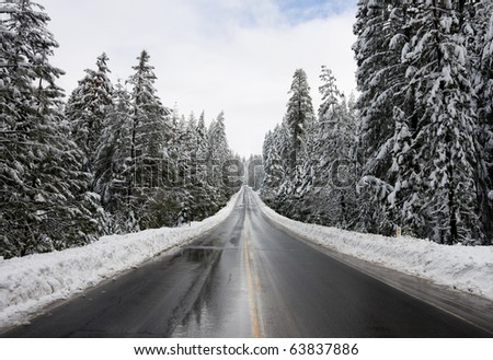 Road through snowy forest - stock photo