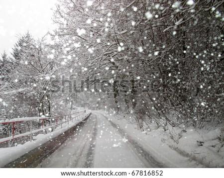 Road through snowy park - stock photo