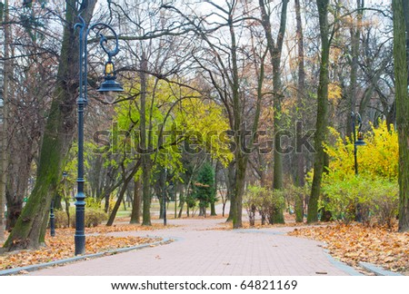 Road through the autumn park - stock photo