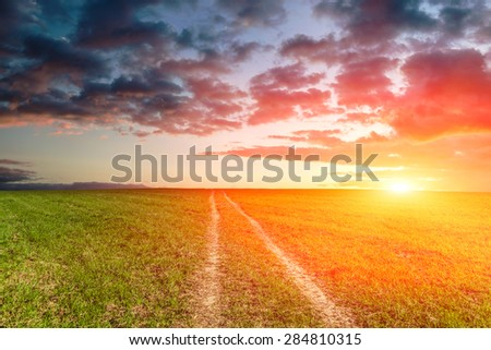 road through the field at sunset - stock photo
