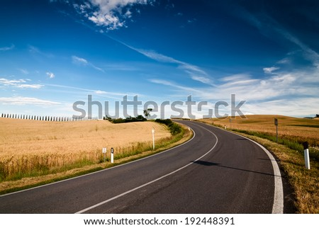 Road through the Fields in Tuskany, Italy.  - stock photo