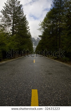 road through the forest in tibet, china - stock photo