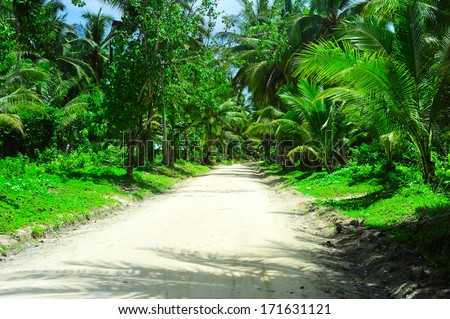 Road through the jungle, Philippines - stock photo