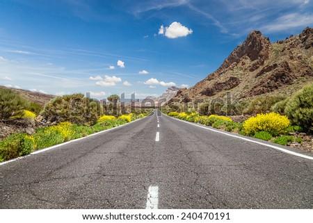 Road through the mountains. - stock photo