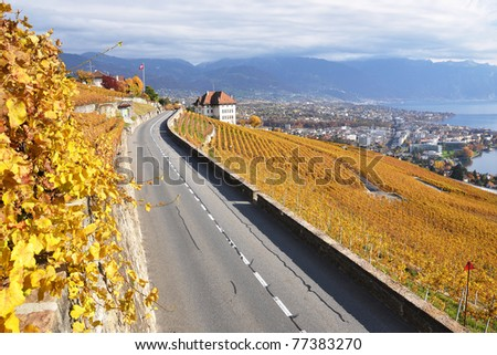 Road through the vineyards in Lavaux region, Switzerland - stock photo