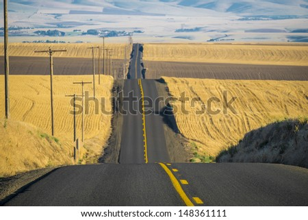 Road through wheat fields ready for harvest in Washington State - stock photo
