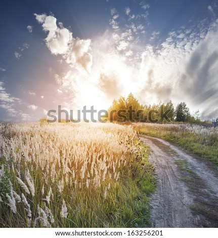 Road to a field. Fall. Sunrise. - stock photo