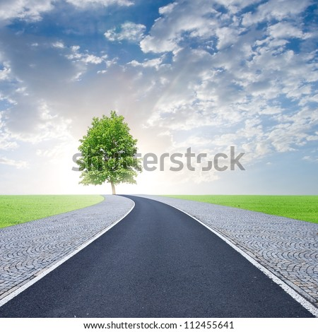 road to life - stock photo