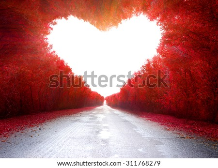 Road to love .Trees in the shape of a heart - stock photo