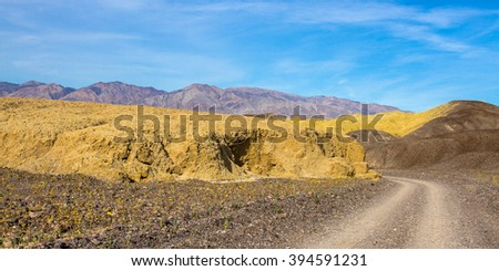 Road to Mustard Canyon with wildflowers in Death Valley National Park - stock photo