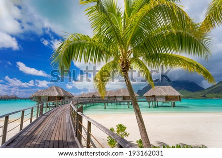 Road to paradise - stock photo