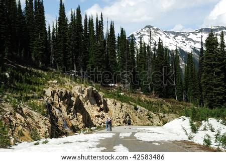 road to snow mountain, british columbia, canada - stock photo