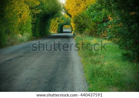 road, travel, road, trees, tunnel - stock photo