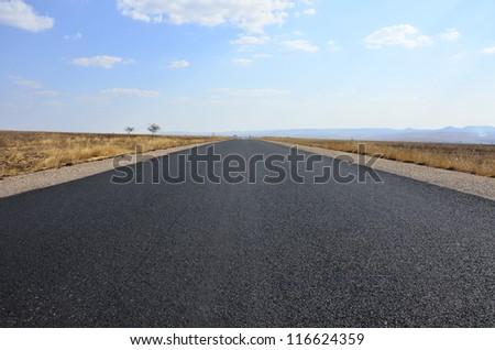 Road Trip on infinite roads through the wilderness - stock photo