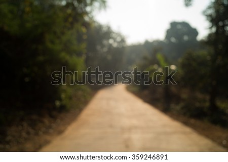 Road way to green forest - stock photo