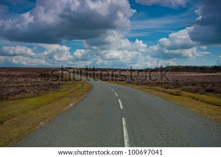 Road winding it's way through the New Forest national park. Horizontal - stock photo