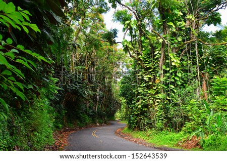 Road winding through the rain forest on the Big Island of Hawaii, USA. - stock photo