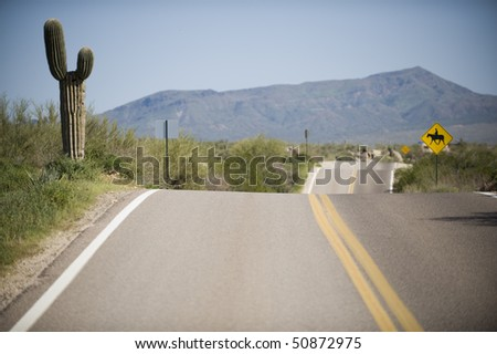 Road with double yellow line and three humps goes off into the distance past a - stock photo