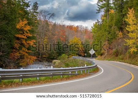 Road with fall trees and river