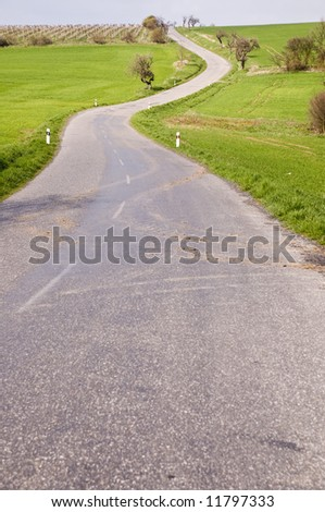 Road with tree alley in countryside with blue sky with clouds
