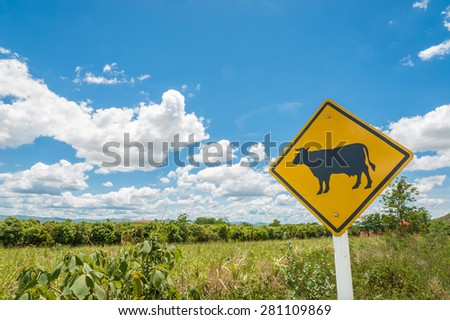 Road works sign for farm . Beware of the cow. Cow traffic sign - stock photo