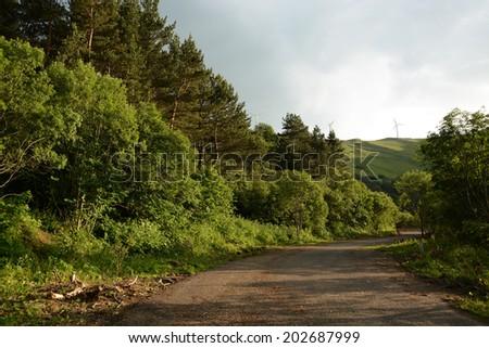 Roadside landscape - stock photo