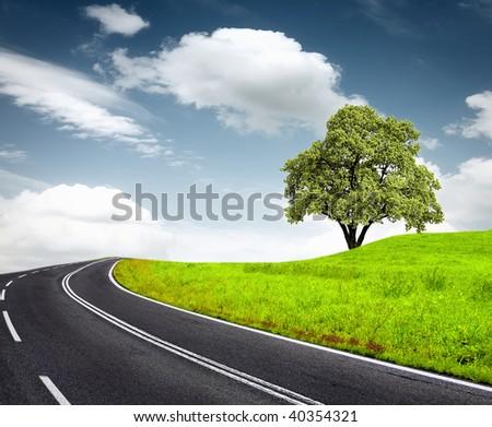 Roadside tree and a cloudy sky - stock photo