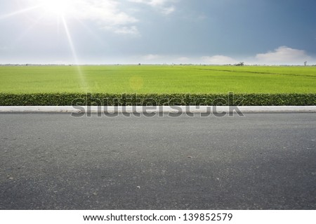 Roadside view and green grass on blue sky. - stock photo