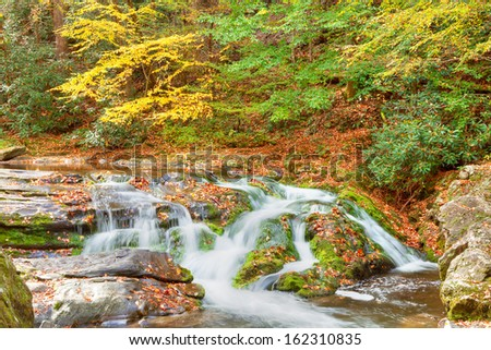Roaring Fork Creek cascades through a lush forest and mossy boulders, Great Smoky Mountains National Park, Tennessee - stock photo