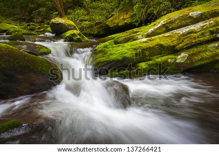 Roaring Fork Great Smoky Mountains National Park Cascade Gatlinburg TN waterfalls in lush green foliage - stock photo