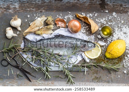 Vector Rainbow Trout Fish Rainbow Trout Animal PNG and