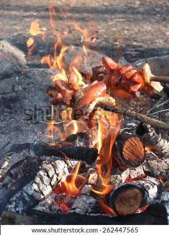 Roast sausages over a fire in nature. Fried sausages. Sausages in fire