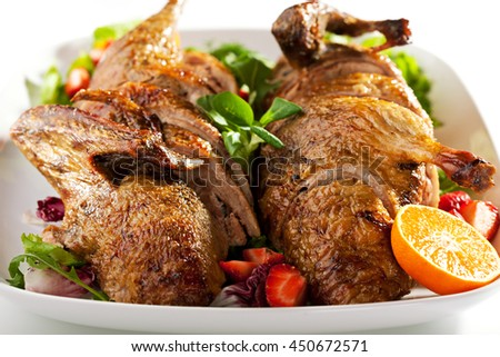Roast Stuffed Duck with Fruit and Berry - stock photo
