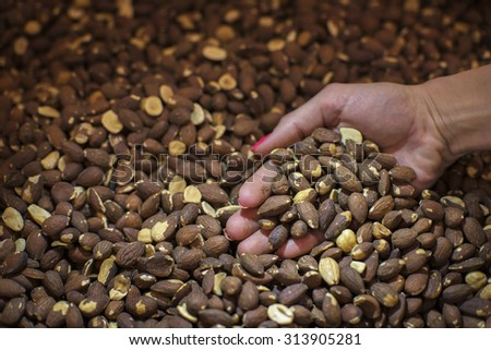 roasted almonds for the filling of chocolates - stock photo